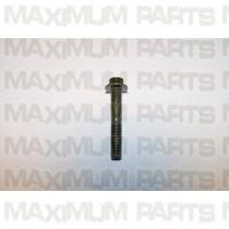 Hammerhead 150 / 250 Socket Bolt M8X1.25X50